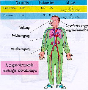 magas vérnyomásból, bradycardiával magas vérnyomás időjárás a mai napra