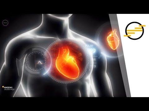 Yandex népi gyógymódok a magas vérnyomás kezelésére