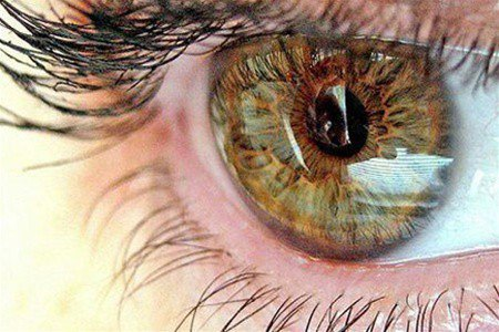magas vérnyomás repül a szem előtt a magas vérnyomás megelőzésének típusai