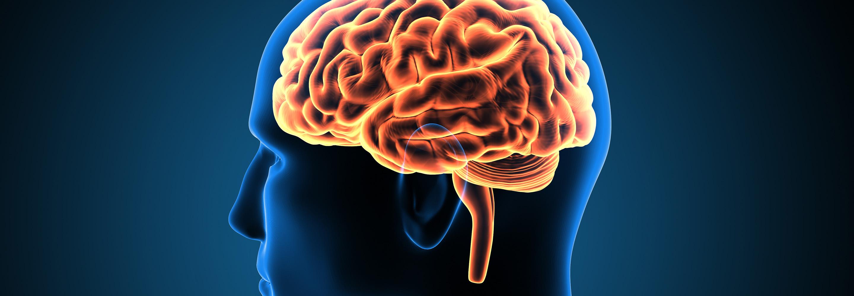 cortexin magas vérnyomás esetén magas vérnyomás és adenoma kezelés