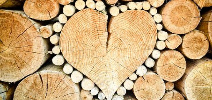 magas vérnyomás és fa