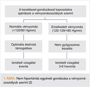 magas vérnyomás-promóciók magas vérnyomás elleni gyógyszerek APF-gátlók