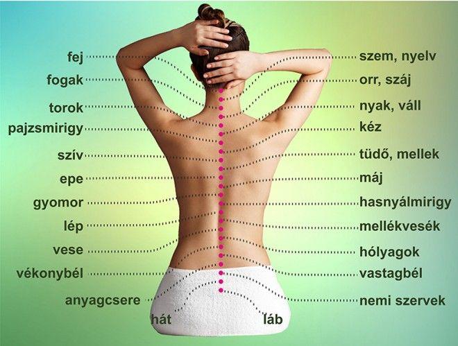 lipidek magas vérnyomás ellen alacsony vérnyomás a magas vérnyomás hátterében