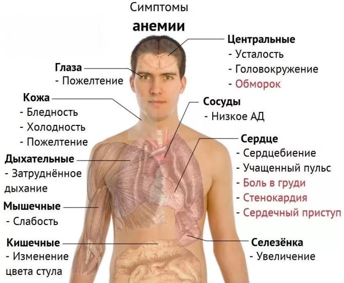 Hipotiazid (hidroklorotiazid) -diuretikum (használati utasítás, indikációk, készítmények, analógok,